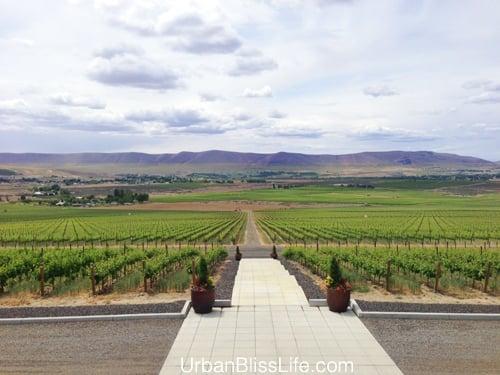 WA Wine Country - Col Solare - 1