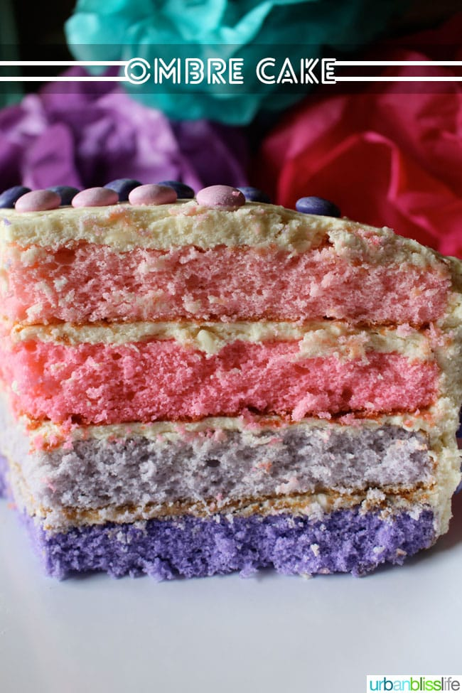 Pink Purple Ombre Cake