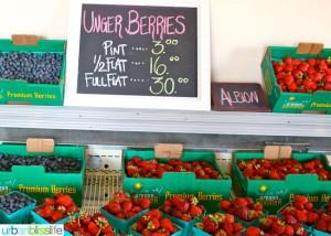 Oregon Berry Fest berries