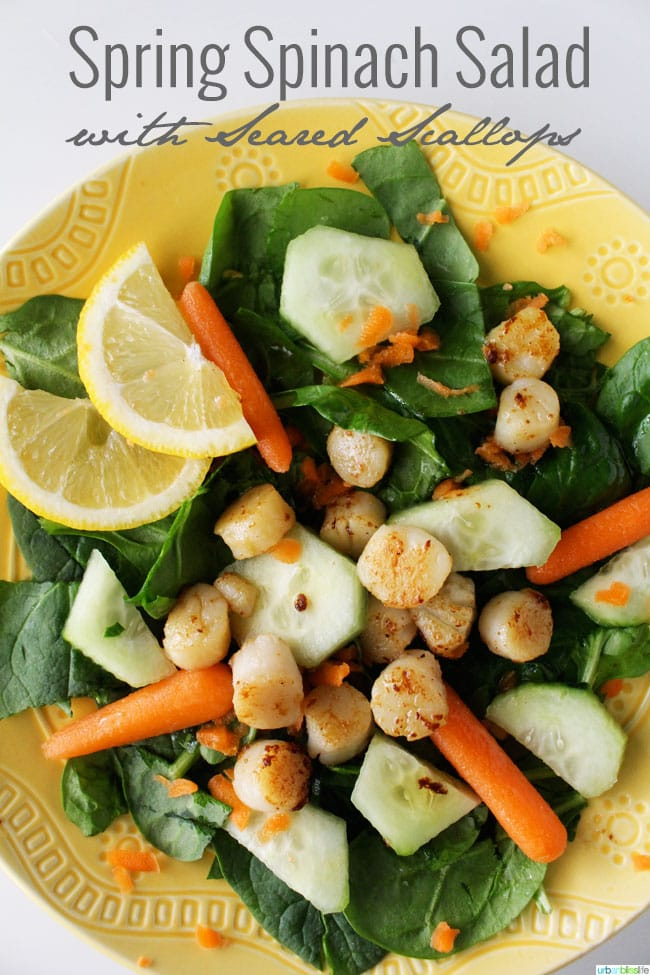 Spring Spinach Salad with Seared Scallops