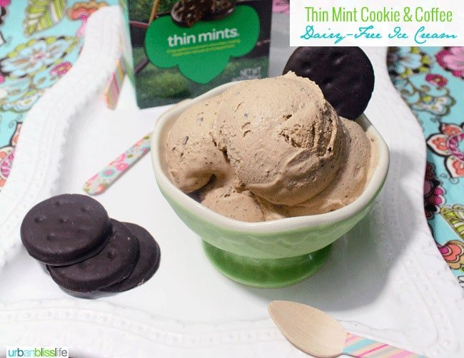 Dairy Free Coffee Ice Cream with Thin Mint Cookies