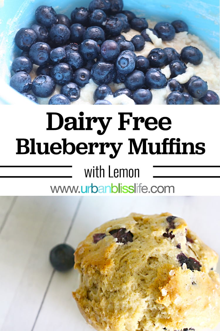 Dairy Free Blueberry Muffins