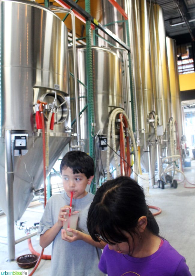 kids in brewery
