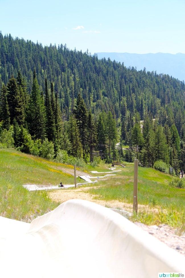 Whitefish Mountain Resort Summer Activities: alpine slide