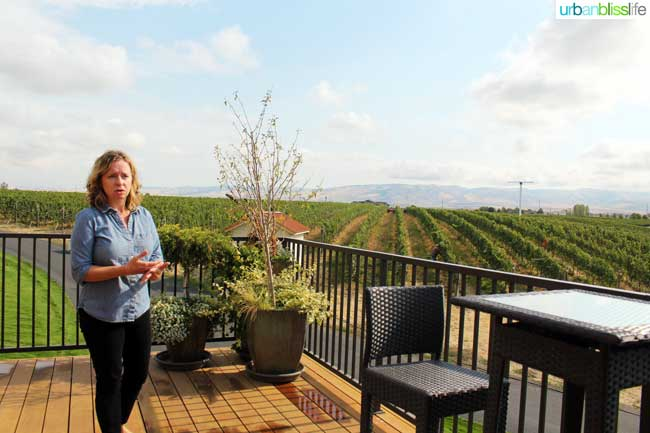 Pepper Bridge vineyards