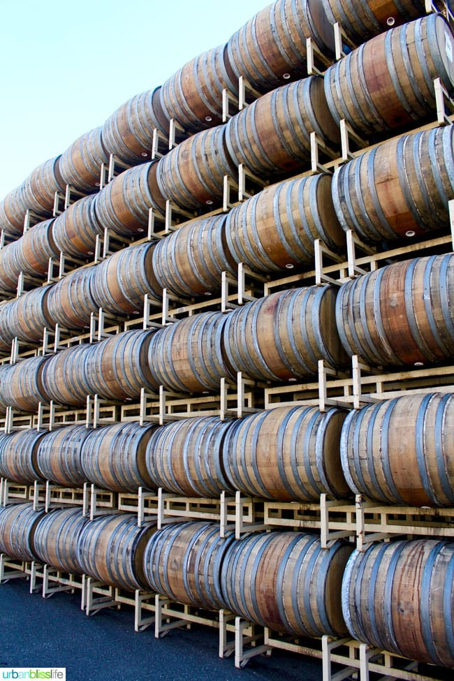 Rodney Strong Vineyards