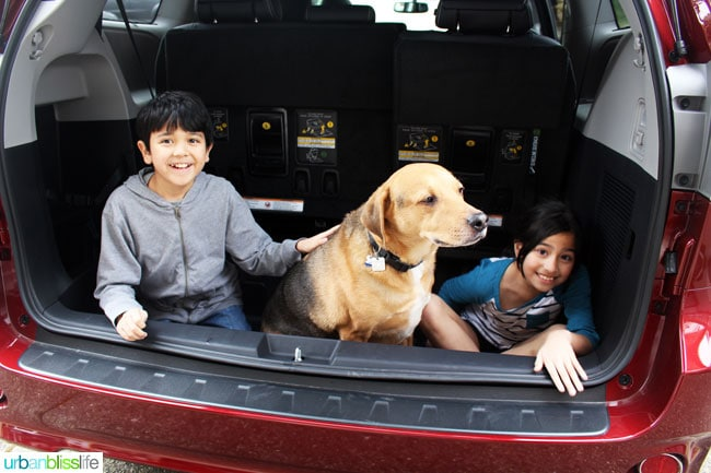 kids and god in 2016 toyota sienna
