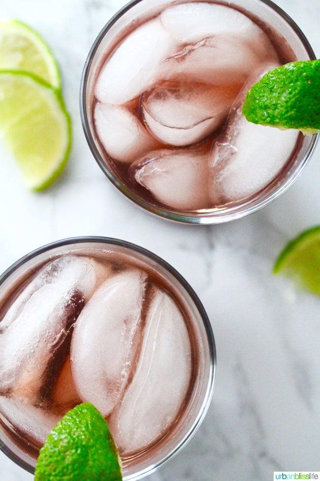 Hibiscus Cocktail Coolers in tumbler
