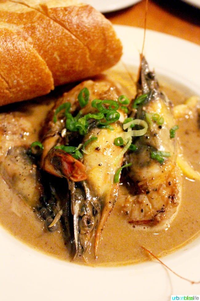 Acadia Portland shrimp dish