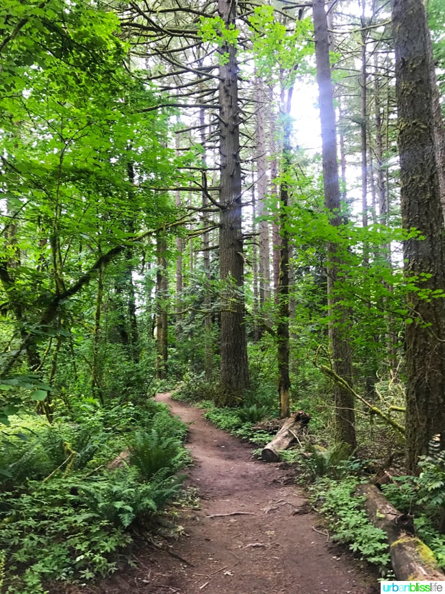 tryon creek state park