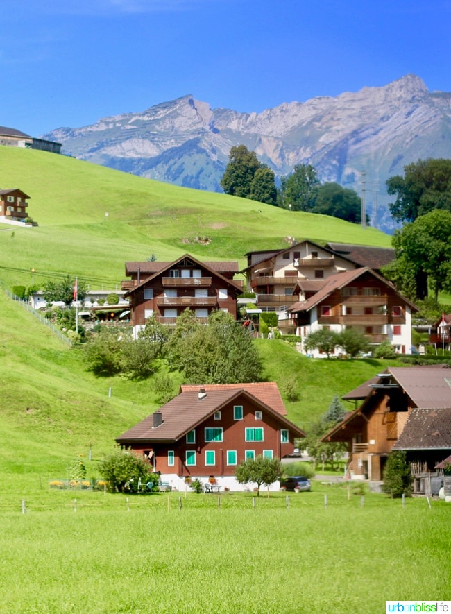 swiss countryside and alps