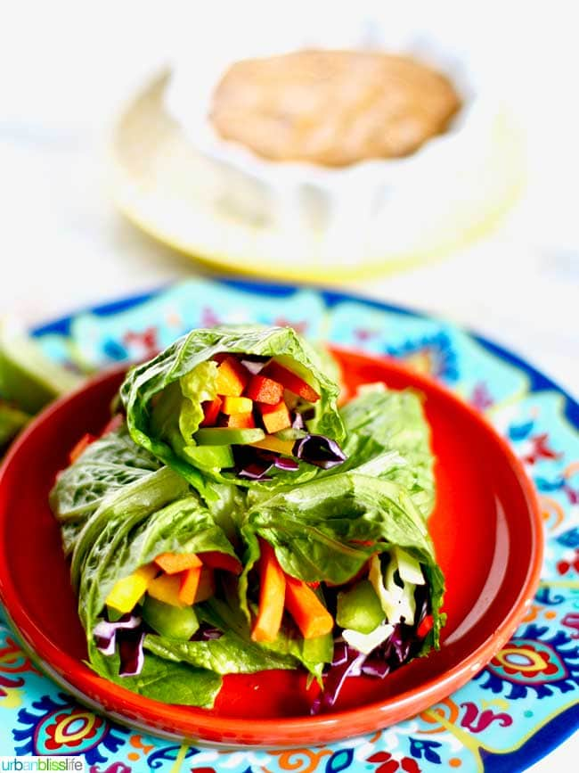 Rainbow salad rolls on a plate