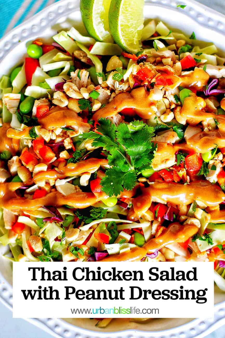 big bowl of Thai chicken salad with title text