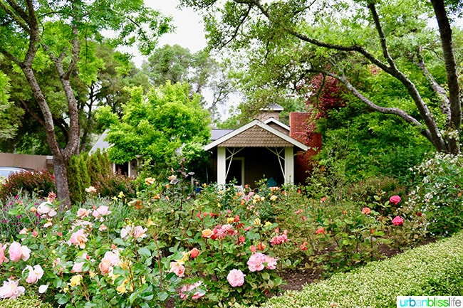 Places to stay in Mendocino: Gardens at The Madrones
