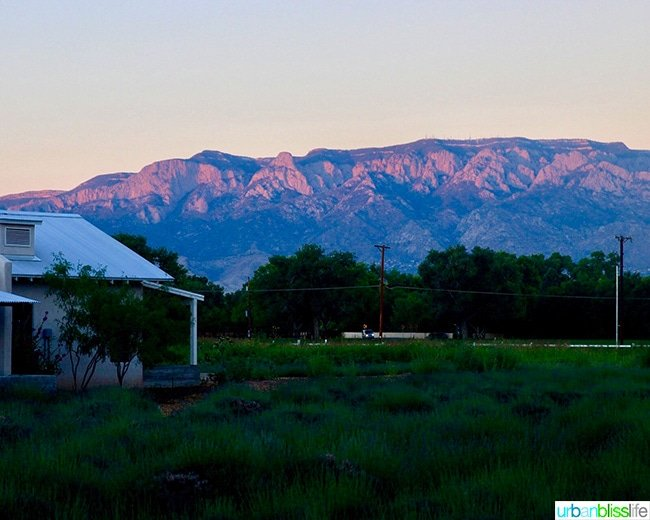 sunset over Sandia Mountains