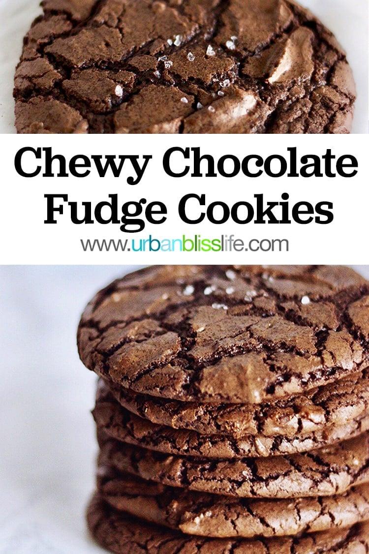 Chewy Chocolate Fudge Cookies