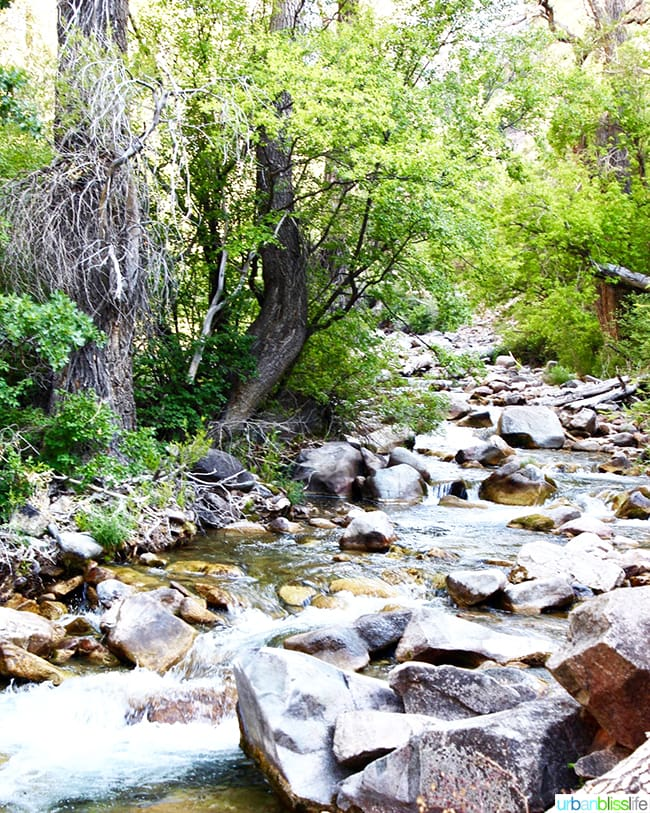 hiking Colorado road trip