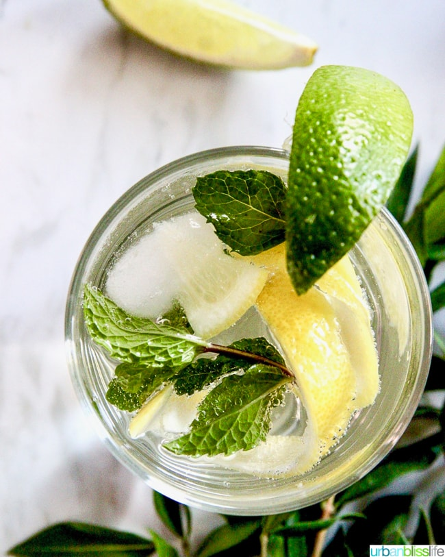 mocktail with lemon and lime