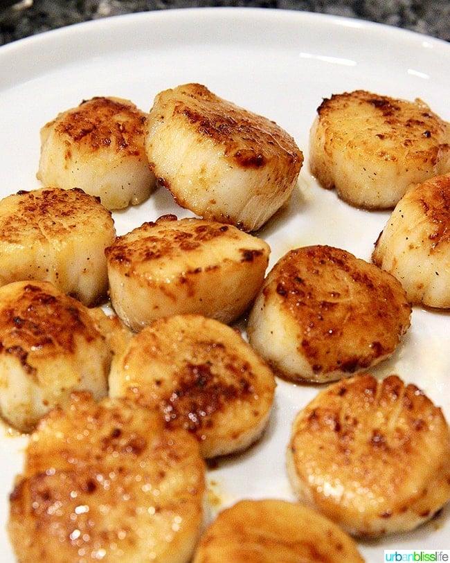 pan seared scallops resting for Seared scallops pasta