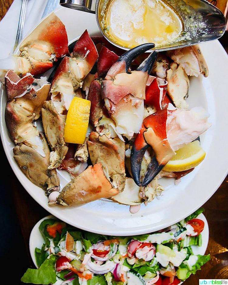 crab leggs and salad at Talbott Hotel Bar Belmullet Ireland