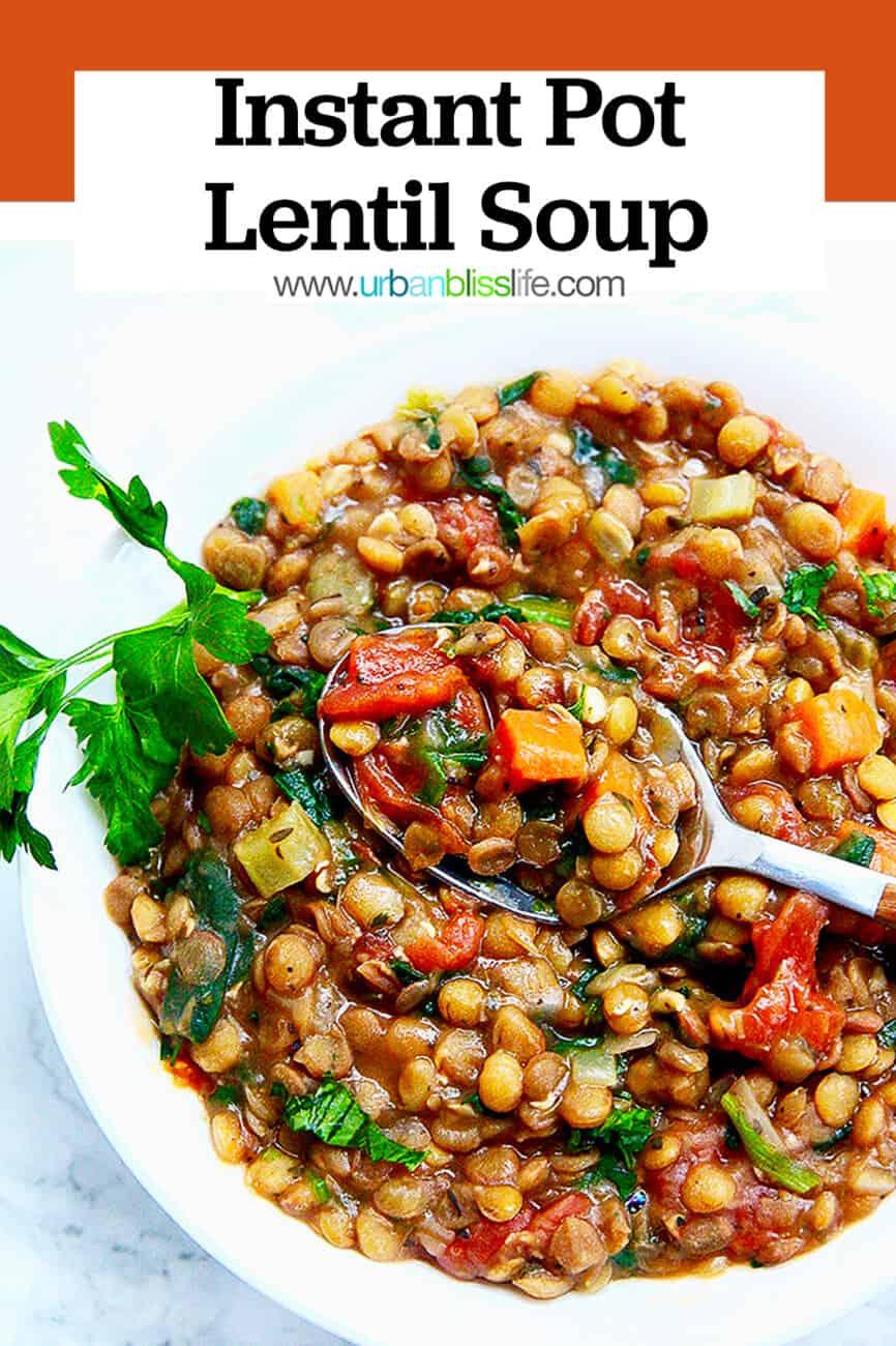 Instant Pot Lentil Soup with title text