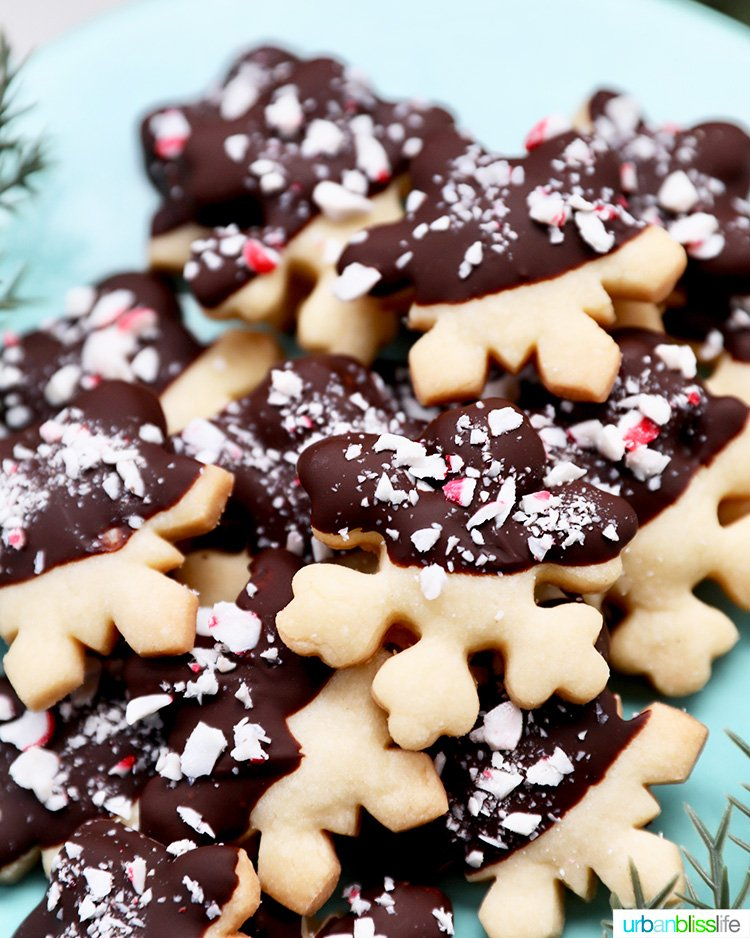 close up of chocolate dipped peppermint shortbread cookies