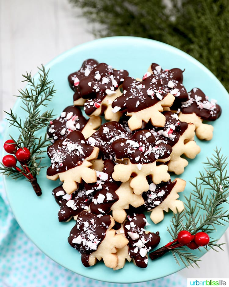 chocolate dipped peppermint shortbread cookies on a plate