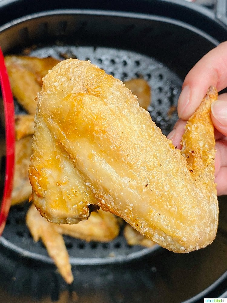 solo close up of crispy air fryer chicken wing