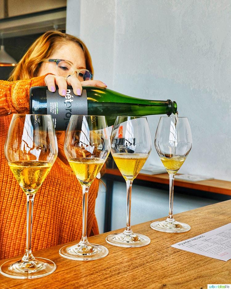 Foundry Vineyard Pet Nat wines