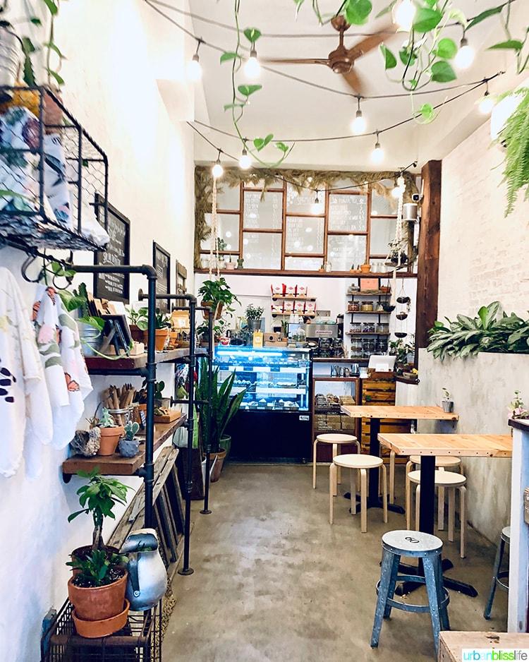 interior of Urban Backyard coffee shop near Little Italy NYC