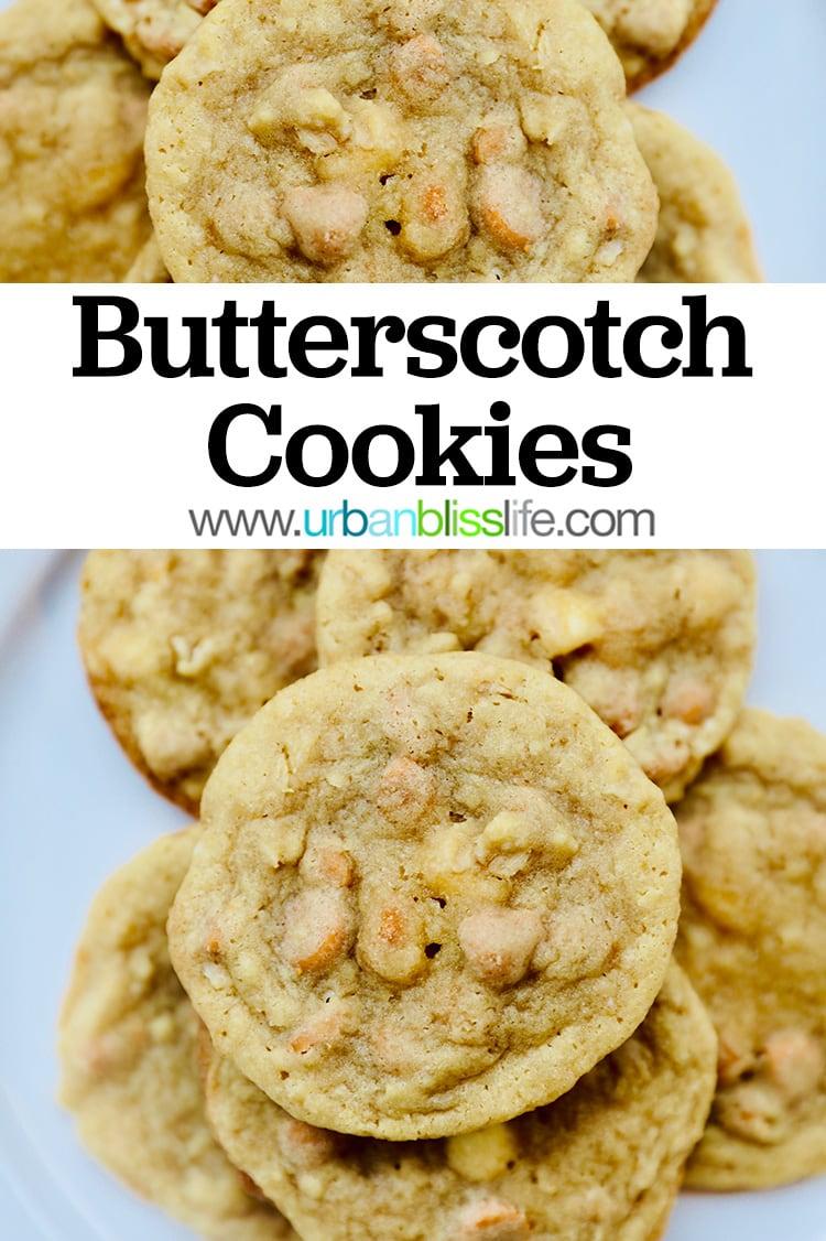 yummy butterscotch cookies