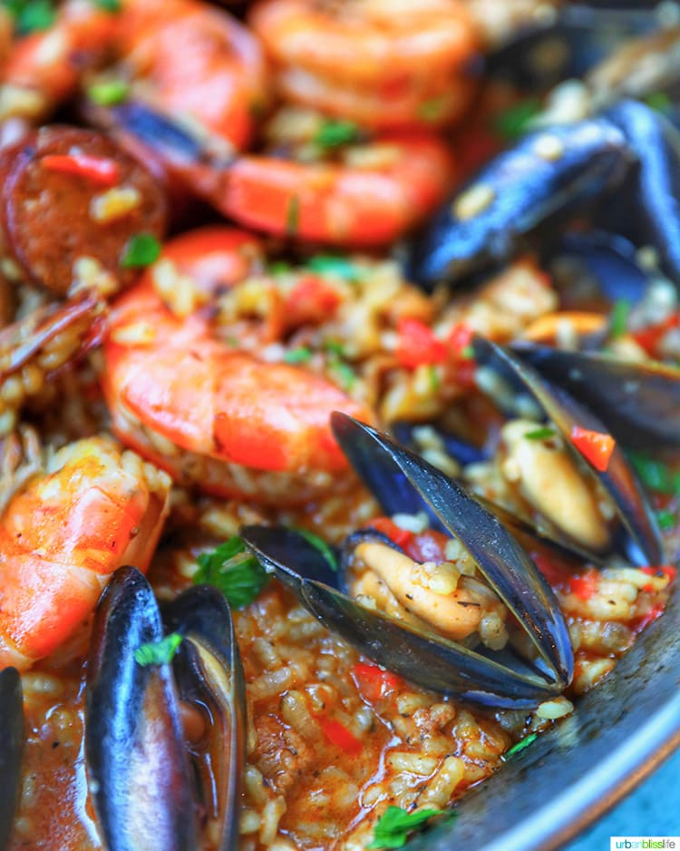 closeup of mussels and shrimp paella