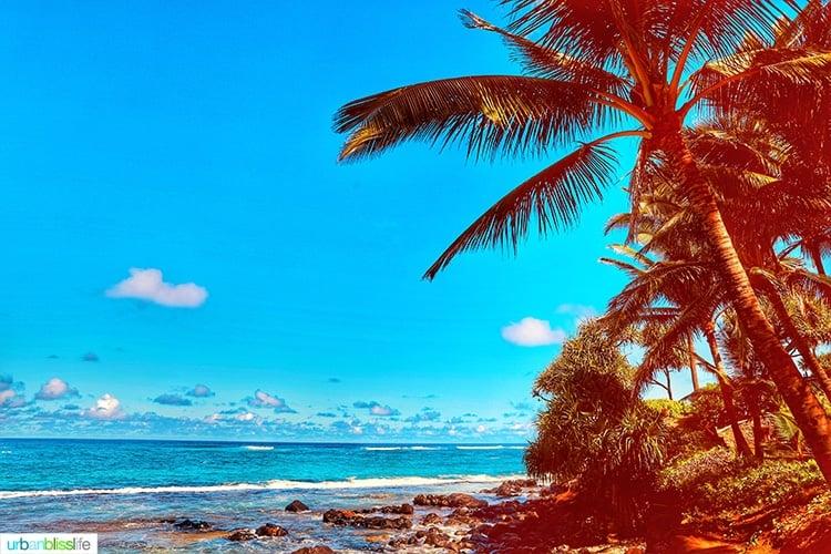 Poipu beach at Mama's Fish House in Maui