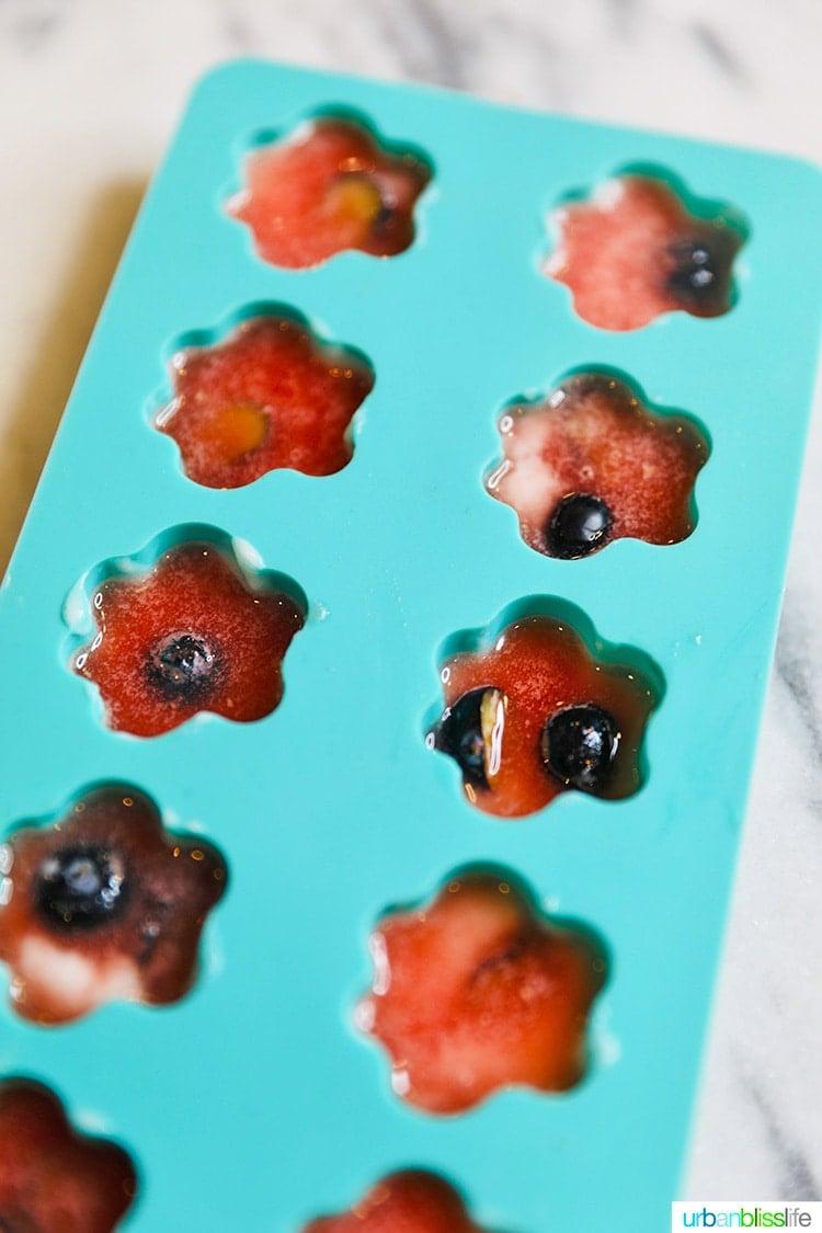 frozen watermelon dog treats in silicone mold