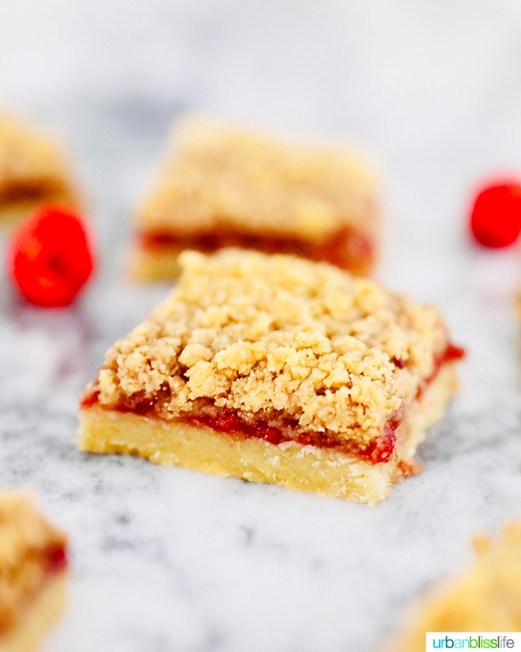 single Raspberry Crumble Bar