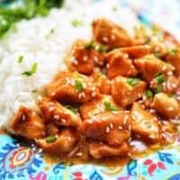 closeup plate of honey garlic chicken and rice