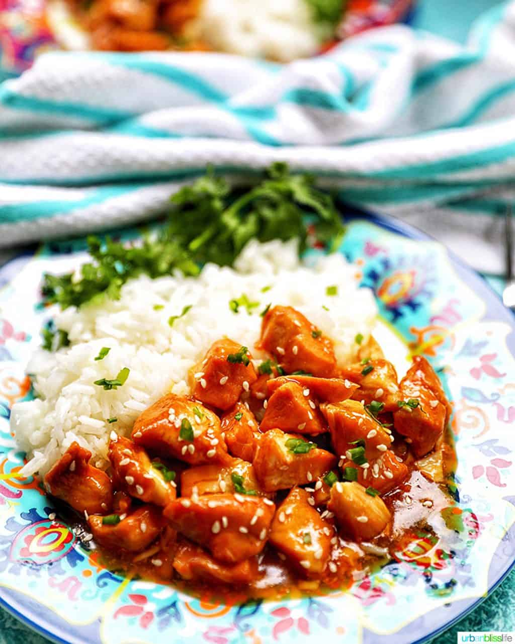 side angle photo of Instant Pot Honey Garlic Chicken and rice