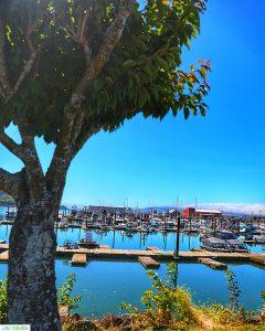Garibaldi, Oregon marina