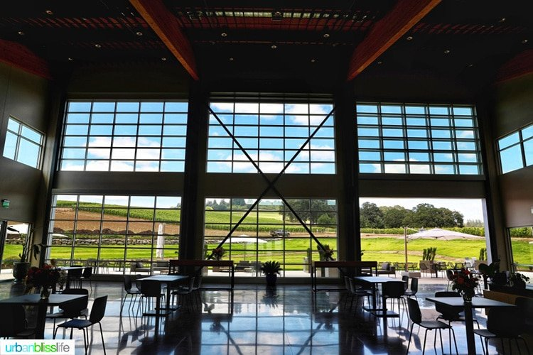 inside of New Stoller Experience Center