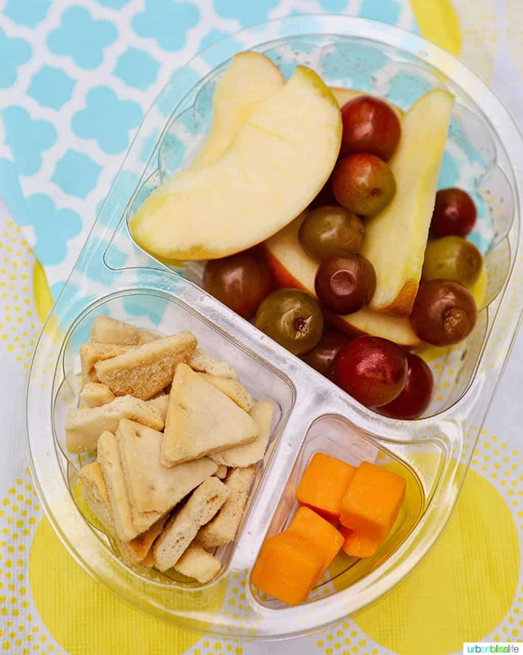back to school lunch snack pack of fruit and cheese