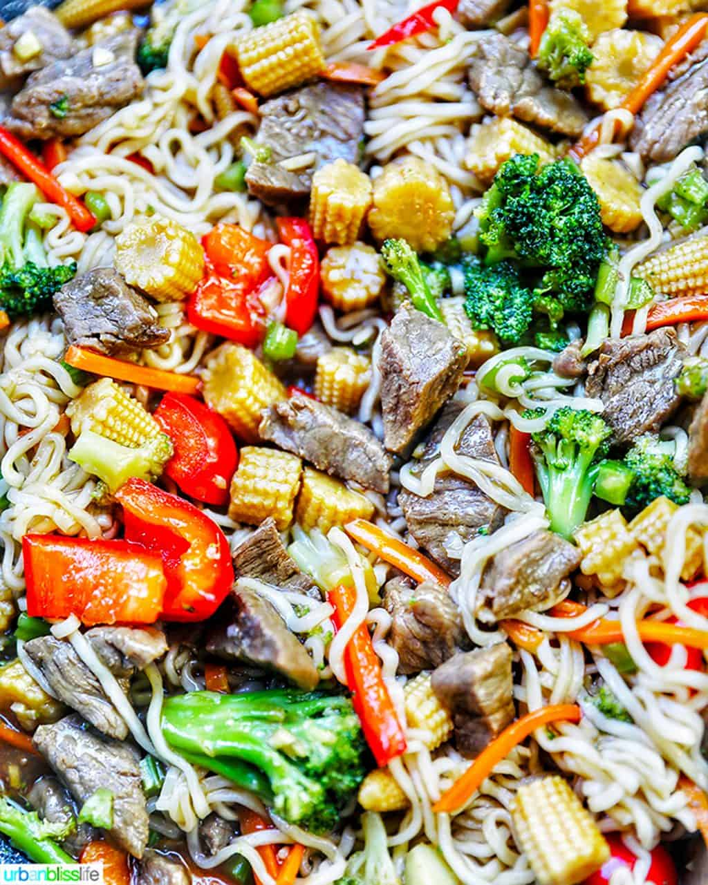 beef lo mein close up