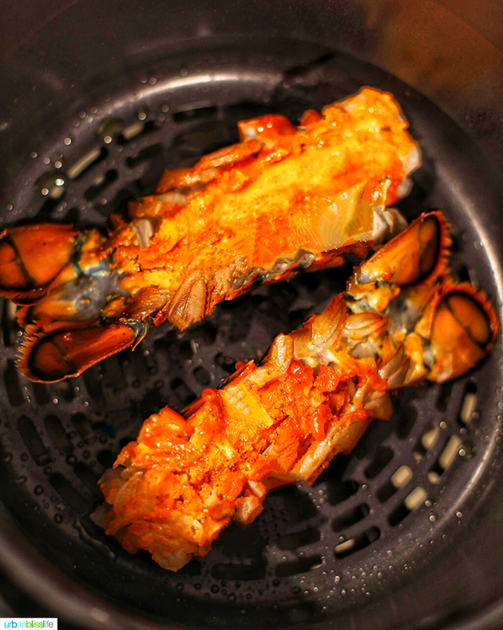 lobster tails in the Ninja Foodi air fryer basket