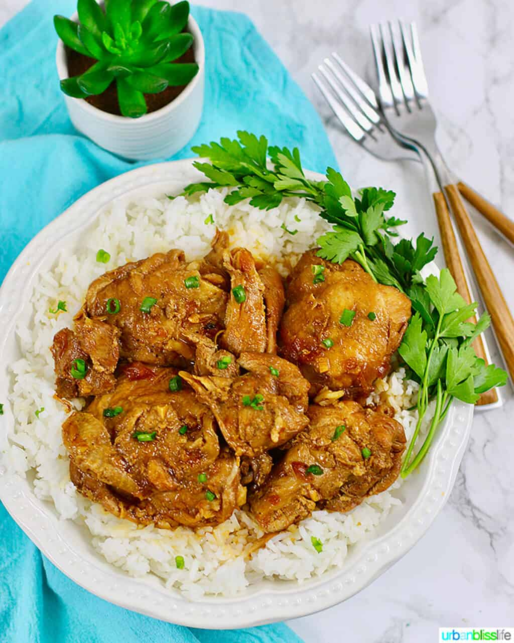 Filipino chicken adobo over rice with forks and a small green plant