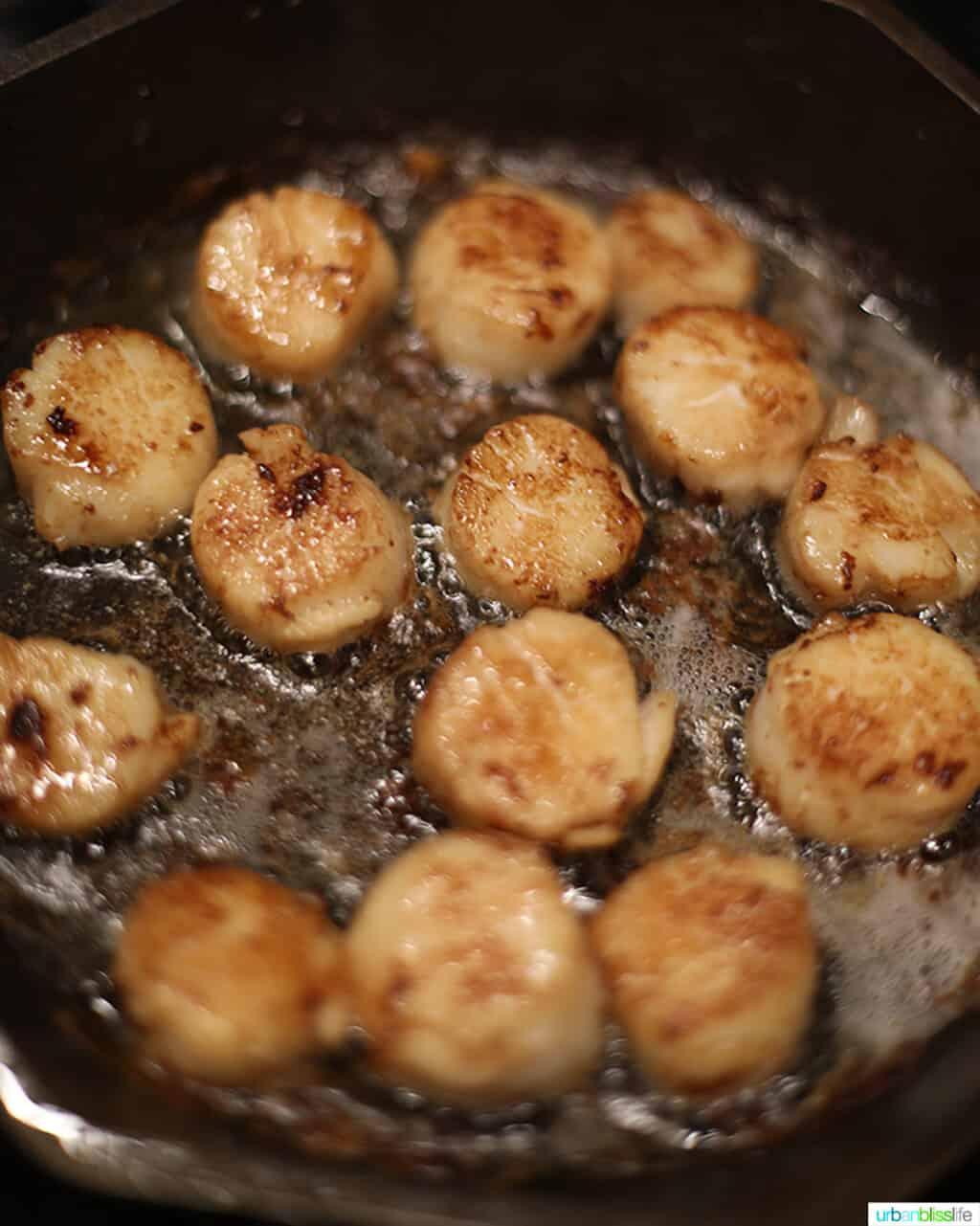 searing sea scallops in a skillet