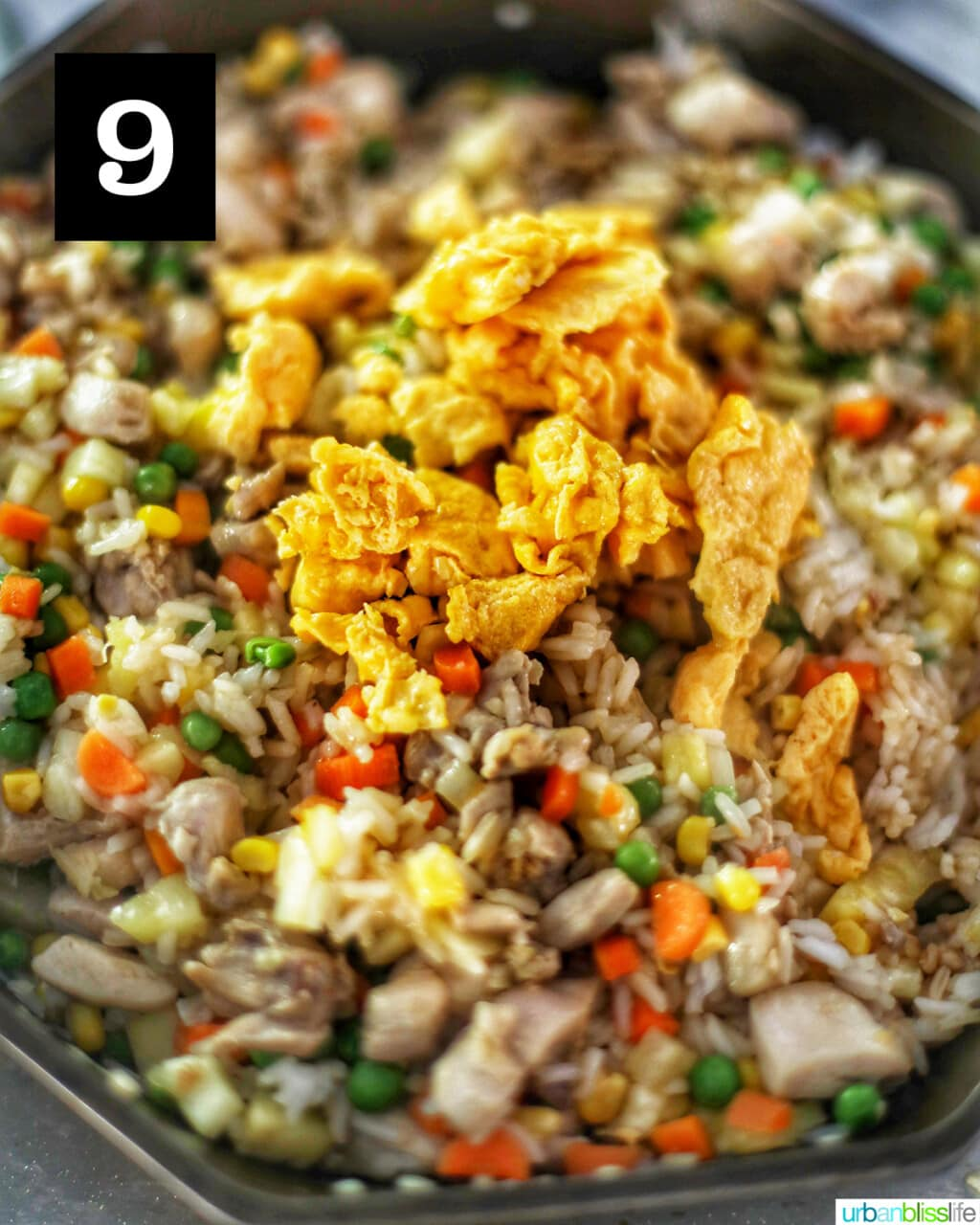 eggs on top of fried rice