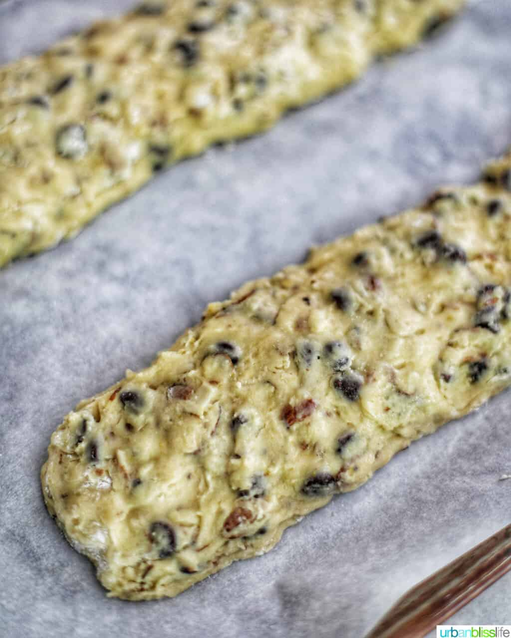 two dough logs for making chocolate chip almond biscotti