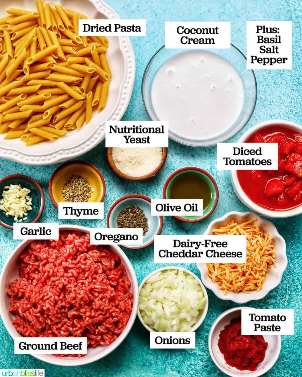 ingredients to make dairy-free creamy ground beef pasta