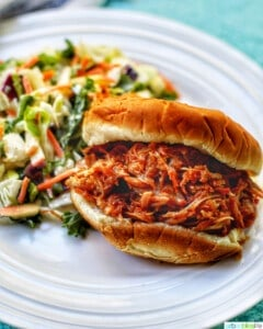 pulled pork sandwich on a white plate with salad
