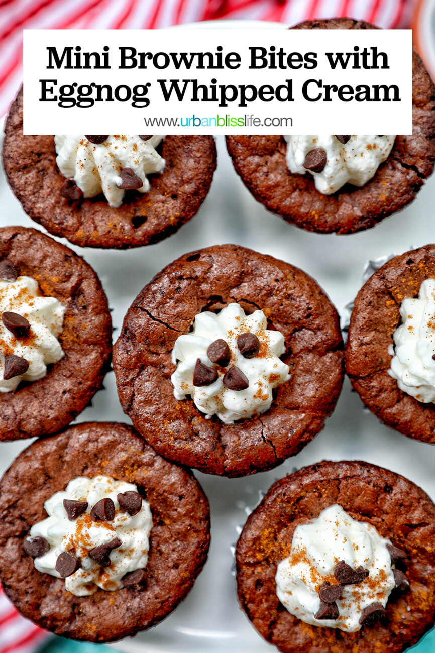 mini brownie bites eggnog whipped cream with text overlay